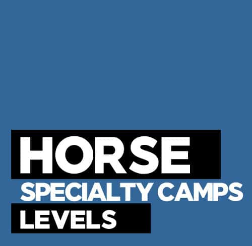 Horse Specialty Camps