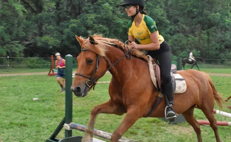 Horse Specialty